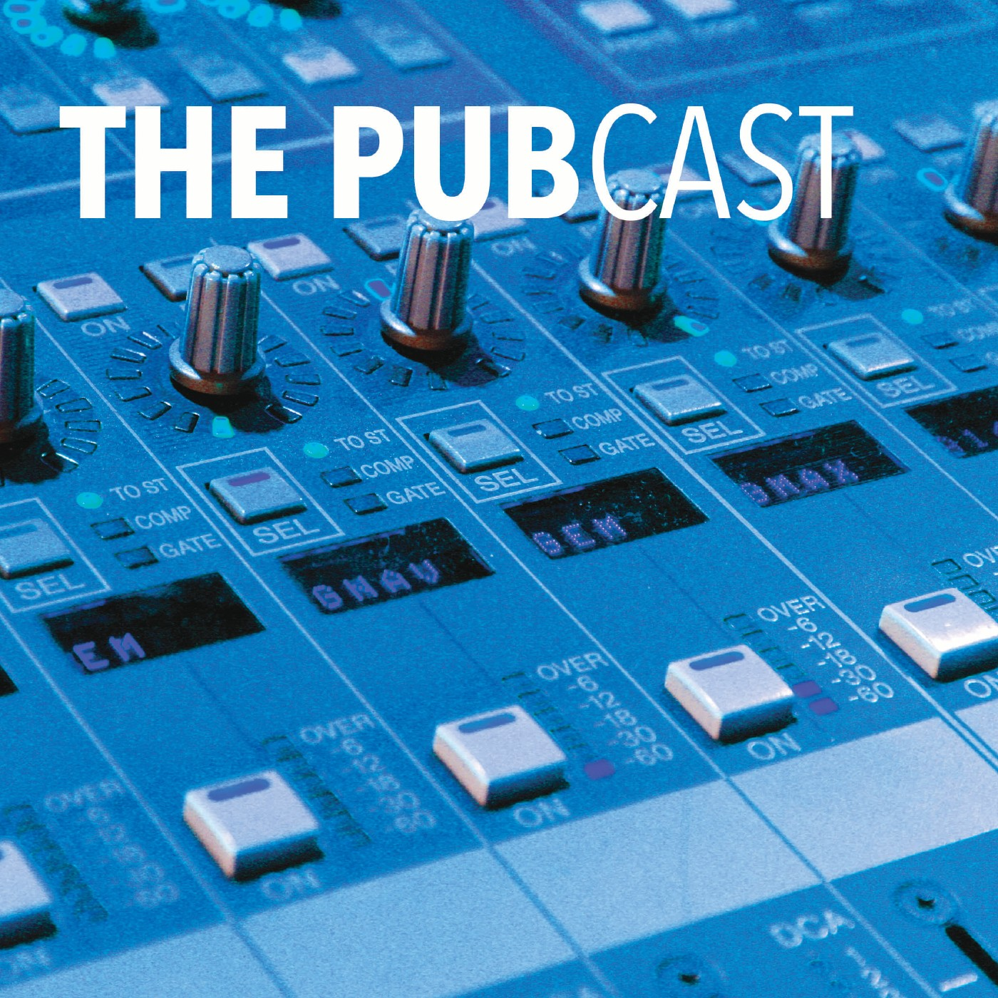 The Pubcast - Interviews with online publishing professionals